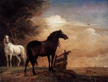 Paulus_Potter_-_Horses_in_a_Field_-_Commons